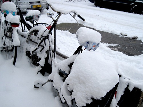 My poor bike was covered by snow...